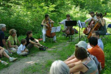 Camille Villanove | Concert dans la nature